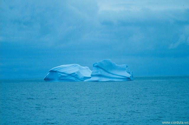 Cordula's Web. NOAA. Lonely Blue Icebergs.