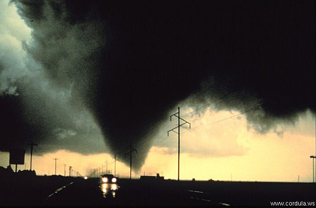 Cordula's Web. NOAA. The Dimmitt Tornado.