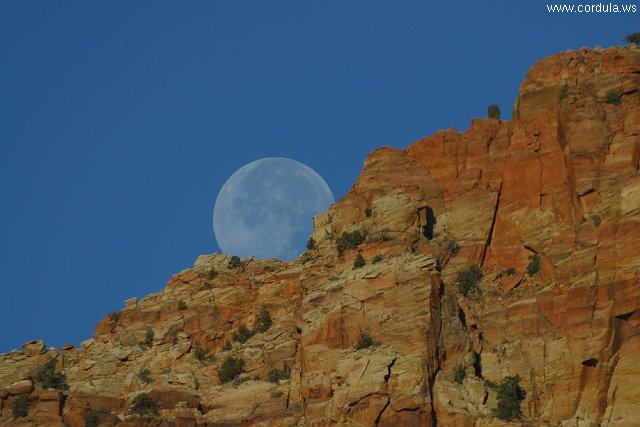 Cordula's Web. PDPHOTO.ORG. Moonrise over the cliffs in Zion.