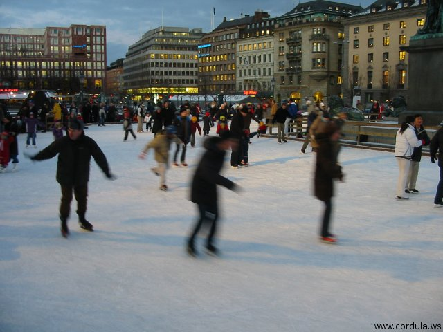 Cordula's Web. Wikicommons. Stockholm Ice Skaters. Tom Corser.